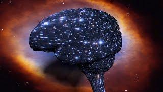 El Universo es Una Mente