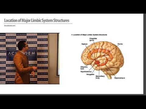 Otonom Sinir Sistemi ve Vagus Sinir Uyarımı