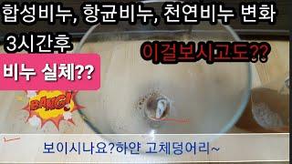 episode4☕ 커피의 해독, 정화작용 정말일까??실…