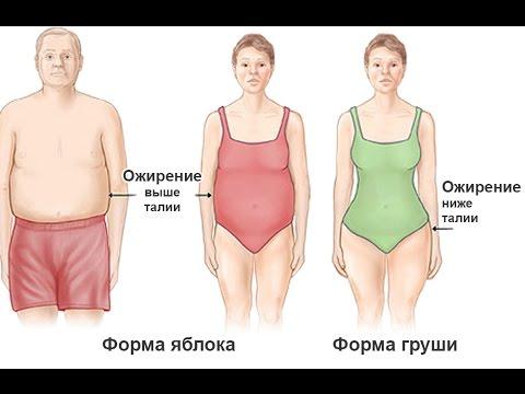 почему висцеральный жир