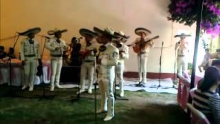 MARIACHI TIERRA DE MEXICO :Te Quiero Dijiste
