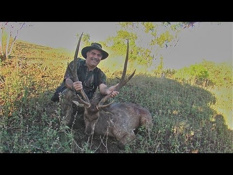 Hunting Rusa in New Caledonia part 35