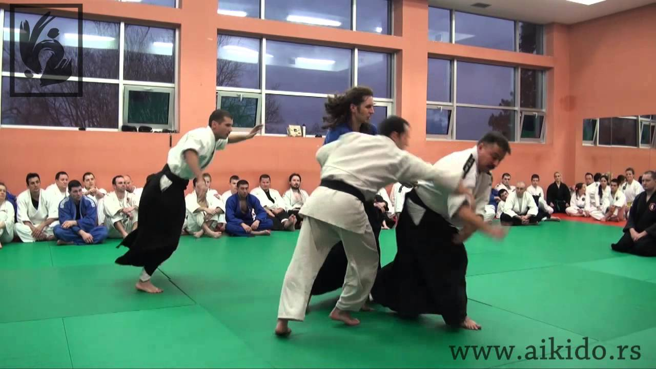 International Aikido Academy: Igor Dmitriyev-Russia: 2-nd Dan Black Belt