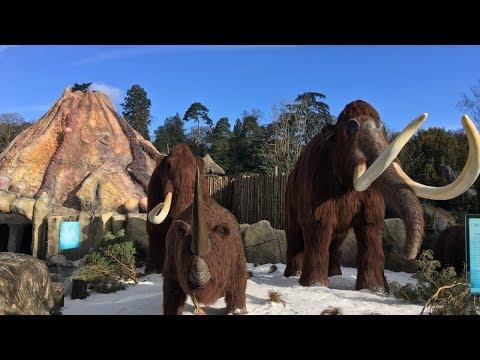 West Midland Safari Park Vlog April 2018