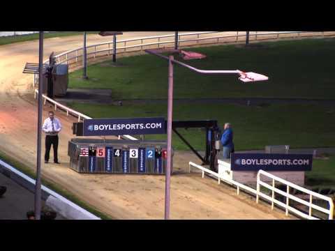 Boylesports com Irish Greyhound Derby Round 3