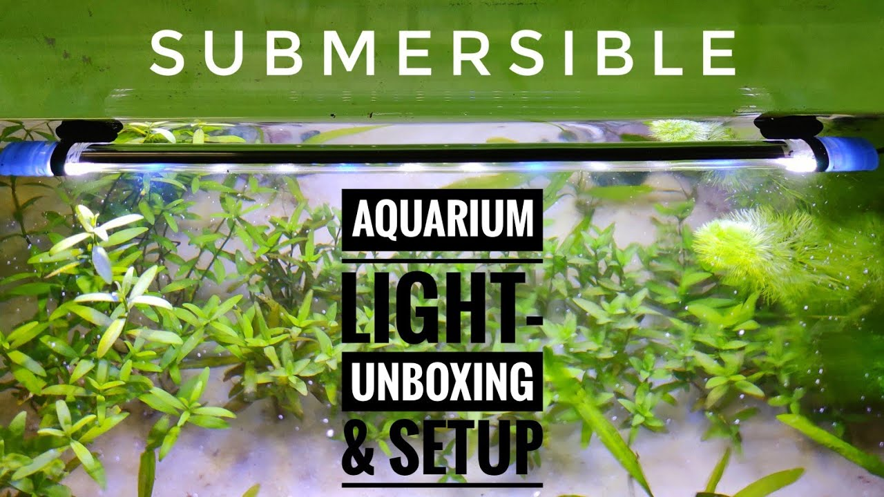 Aquarium Submersible Light Unboxing And Setting Crazyf India Youtube