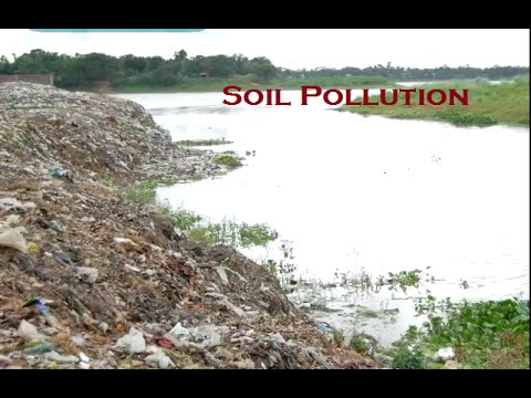 Soil pollution and its impact on environment part 3 for Soil environment