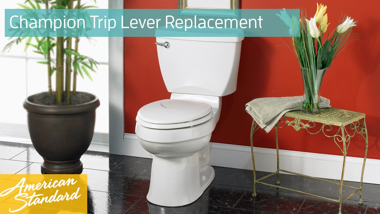 how to install american standard champion toilet seat