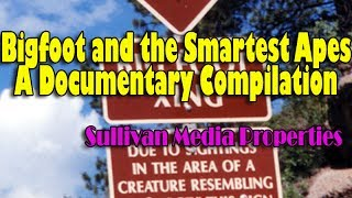 Bigfoot and the Smartest Apes  || a Sullivan Media Properties clip-vestigation