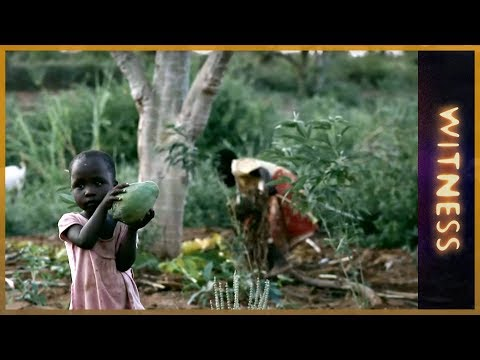 Kisilu: The Climate Diaries - Witness