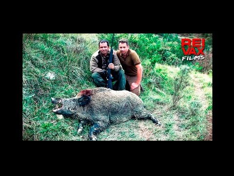 HUNTING DUCKS AND WILD BOARS IN THE SOUTH OF FRANCE - Www.reivaxfilms.com