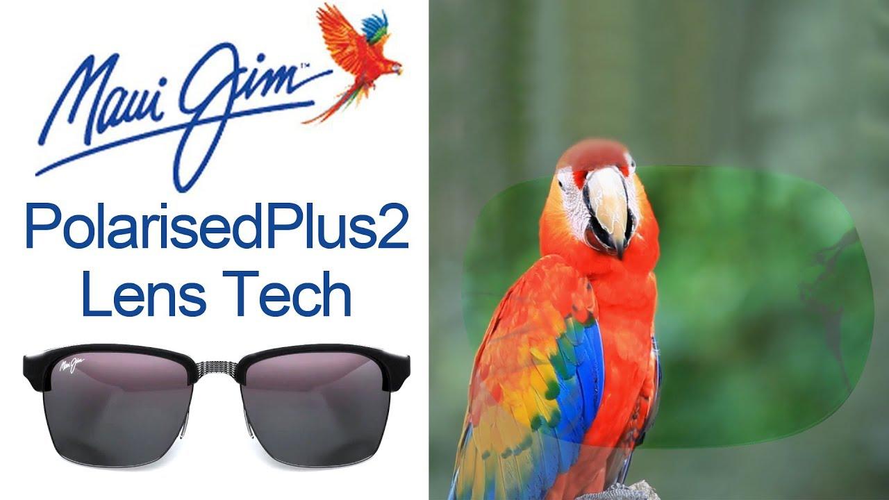 1e9576f3cbd58 Maui Jim PolarizedPlus2® Lens Technology