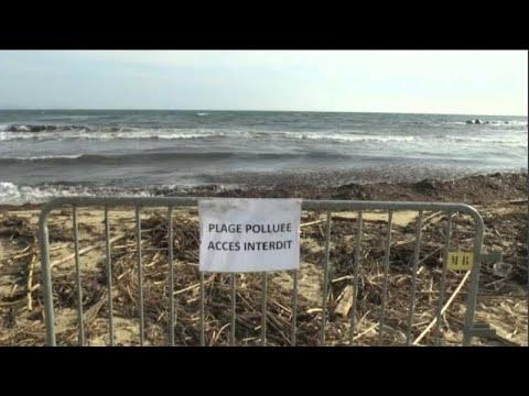 شاهد: تنظيف شاطئ الريفييرا الفرنسي بعد حادث تصادم سفينتين …  - نشر قبل 9 ساعة