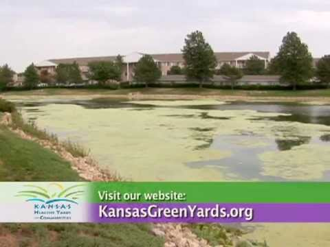 Removing Weeds In Ponds