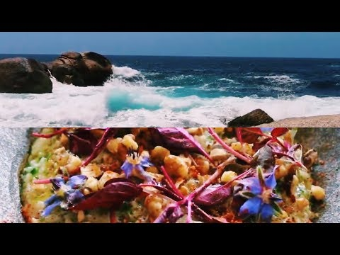 DAY AT THE WINERIES | TASMANIA TRAVEL VLOG #4