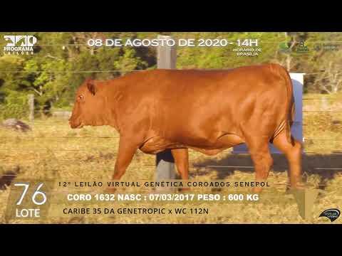 LOTE 76 CORO 1632