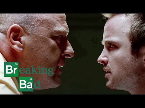 """Bit by a Dead Bee"" - Breaking Bad: S2 E3 Recap"