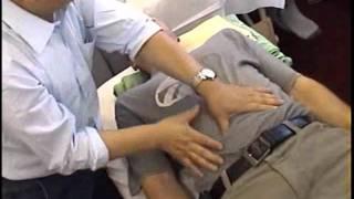 TUINA - výuka čínských masáží pod vedení prof. WANG Fuyin