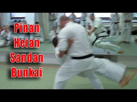 Practical Kata Bunkai: Pinan / Heian Sandan Opening Sequence