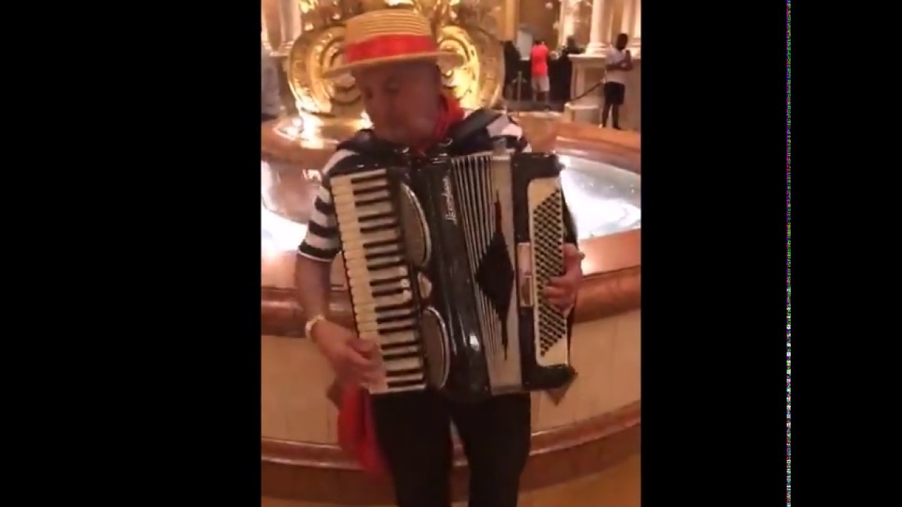 Beautiful Accordion Music, France Traditional Music Song