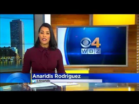 Whitney Burbank Wbz Tv Wwwpicturessocom