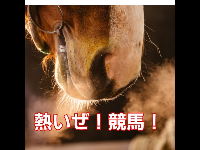 浅井企画presents 熱いぜ!◎◎!第一回は「競馬!」