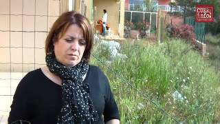 Var - Cuers : Le mur « de la honte » dans un lotissement à logements sociaux