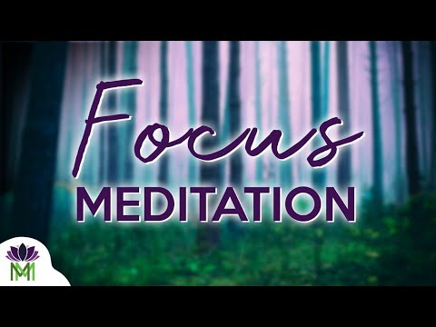 10 Minute Guided Meditation for Focus