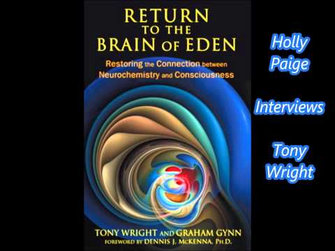 Tony Wright discusses the origins of human insanity