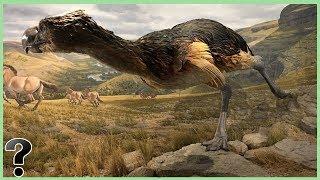 What If Terror Birds Didn't Go Extinct?