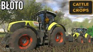 Cattle and Crops - BŁOTO, analiza nowego filmiku [nowa gra rolnicza]