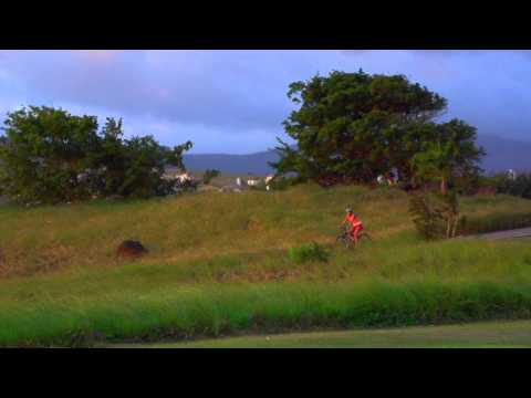 Mauritius Tourism Film | Carrot Films
