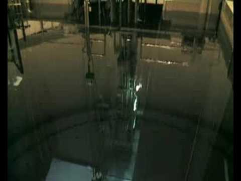 Nuclear Reactor Pulsing