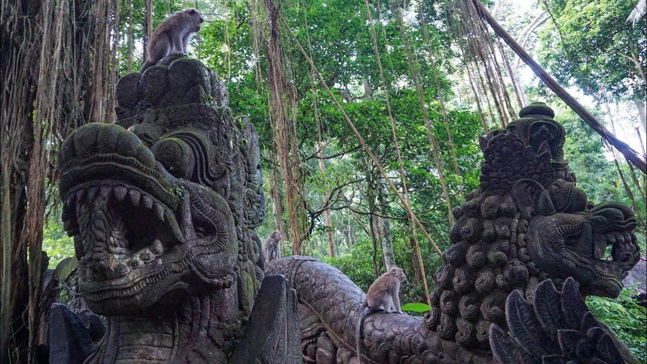 Ubud Monkey Forest The Sacred Monkey Sanctuary In Bali Youtube