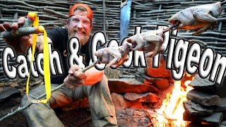 Slingshot Catch and Cook Pigeon AKA SQUAB Day 7 of 8 Maine W.L.C. /Catch And Cook Survival