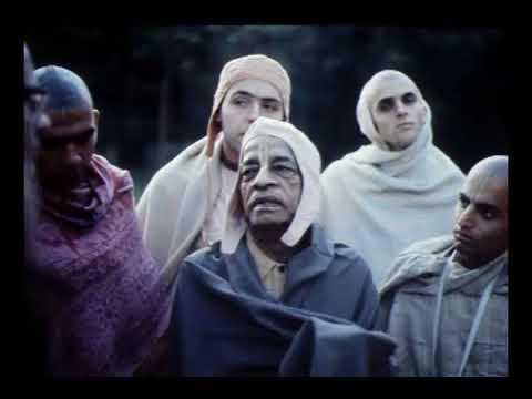 Prabhupada 0616 Brāhmaṇa, Kṣatriya, Vaiśya, Sūdra — Questa è la Divisione Naturale