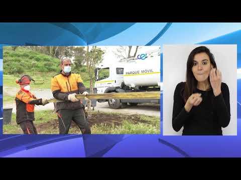Aranguren vuelve a la vida dos años después del incendio