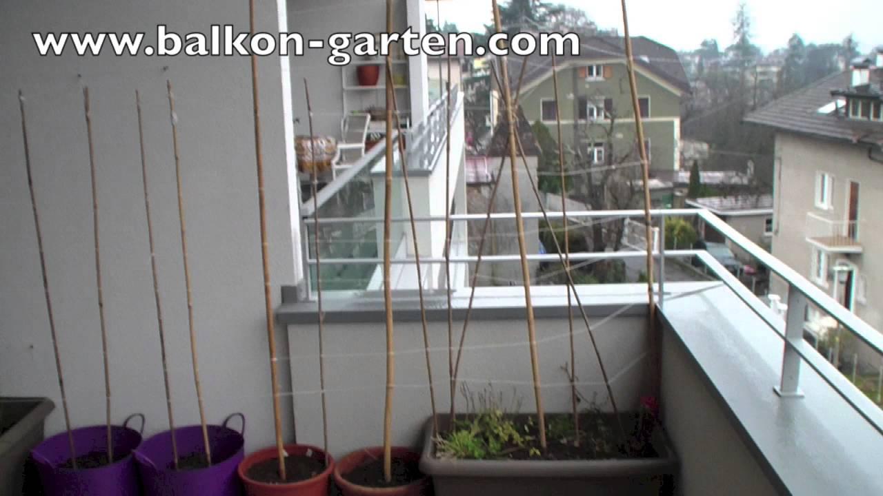 balkon garten tagebuch 2016 teil 2 stangenbohnen rankhilfe youtube. Black Bedroom Furniture Sets. Home Design Ideas