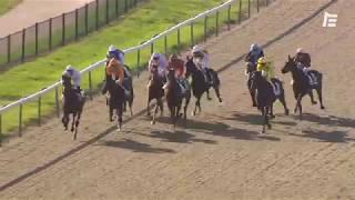 Vidéo de la course PMU PRIX DE LA SEIGNEURERIE
