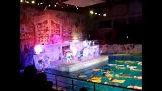 Невская волна Водное шоу Страна снов