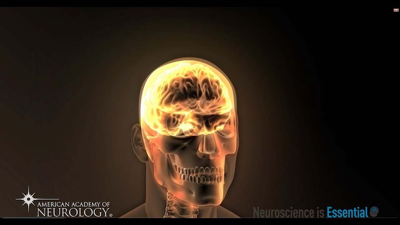 Neuroscience Is   Essential - American Academy of Neurology