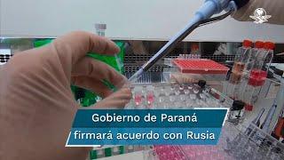 El gobernador del estado de Paraná, Ratinho Junior, tiene previsto reunirse este miércoles con el embajador de Rusia en Brasil, Serguei Akopov, para abordar el acuerdo