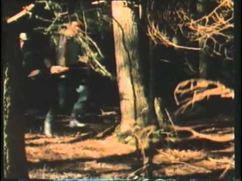Download Grizzly, l'orso che uccide (FILM COMPLETO)