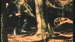 Grizzly, l'orso che uccide (FILM COMPLETO)