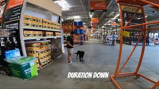 LABRADOR RETREIVER / DOG TRAINING