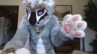 fursuit suit up fluff muffin alamode the dutch angel dragon