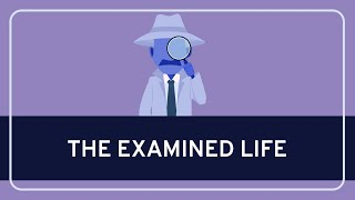 The Examined Life: Know Thyself #1 | WIRELESS PHILOSOPHY