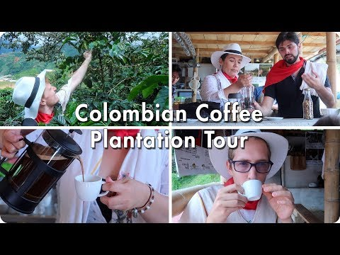Colombian Coffee Plantation Tour | Medellin, Colombia | Evan Edinger Travel Vlogger