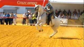 Juan Fernando Holgado y Caramba Final Campeonato de España 2012 3º clasificado.wmv