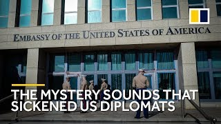 Mystery illness that struck US diplomats in China and Cuba 'likely caused by surveillance'
